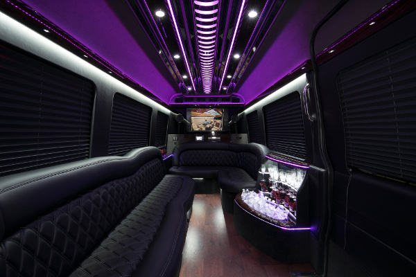 12 Passenger Party Buses Irving
