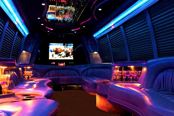 Irving 18 Passenger Party Bus